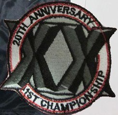 Chicago Bulls 20th Anniversary  Patch