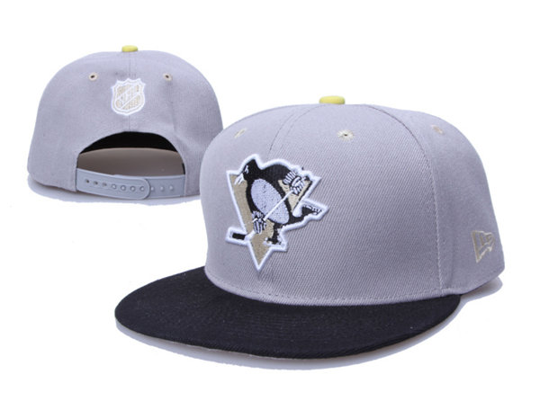 Pittsburgh Penguins 17