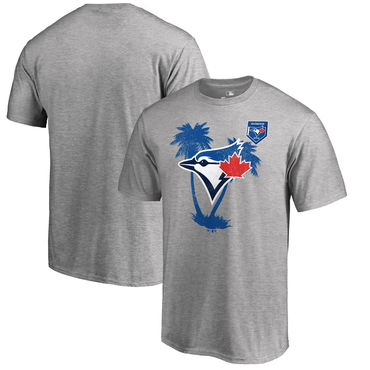 Toronto Blue Jays Fanatics Branded 2018 MLB Spring Training Vintage T Shirt Heather Gray